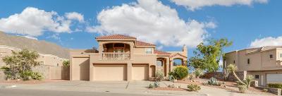El Paso Single Family Home For Sale: 212 Cactus Pointe Court