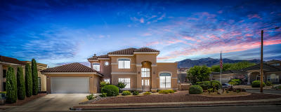 El Paso Single Family Home For Sale: 6371 Franklin Summit Drive