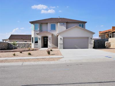 Canutillo Single Family Home For Sale: 601 Jalynn Grace Drive
