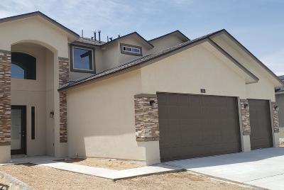 El Paso Single Family Home For Sale: 224 Jennice