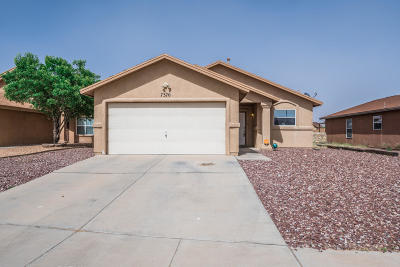 Single Family Home For Sale: 7370 Mesquite Sun Lane