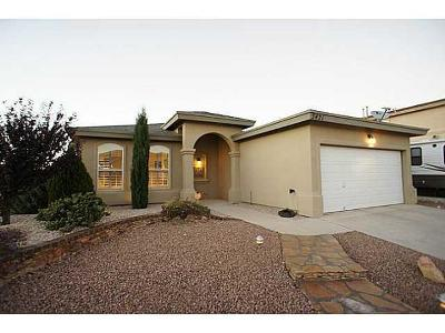 El Paso Single Family Home For Sale: 5421 Francisco Roque Drive