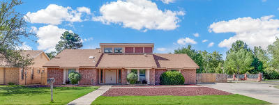 El Paso Single Family Home For Sale: 500 Cross Timbers Court