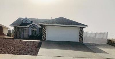 El Paso Single Family Home For Sale: 1651 Roger Bombach Drive