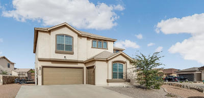 El Paso Single Family Home For Sale: 3100 Lookout Point Place
