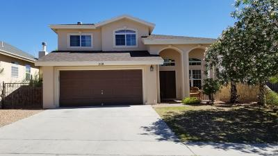 El Paso Single Family Home For Sale: 228 Summerbrooke Court Court