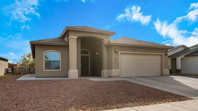 El Paso Single Family Home For Sale: 3237 Bell Point Drive