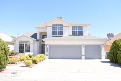 El Paso Single Family Home For Sale: 12613 Sun Empress Drive