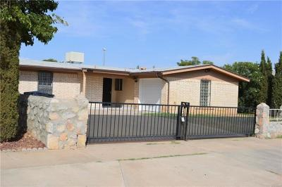 El Paso Single Family Home For Sale: 10416 Lambda Drive