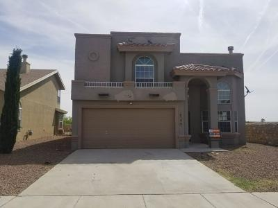 El Paso Single Family Home For Sale: 10798 Elise Street