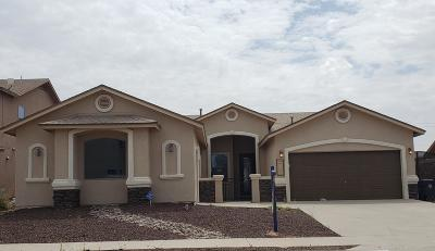 El Paso TX Single Family Home For Sale: $210,950