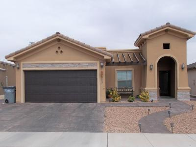 El Paso TX Single Family Home For Sale: $183,900