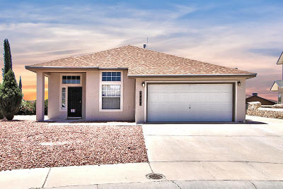 El Paso TX Single Family Home For Sale: $189,000