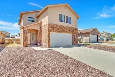 El Paso Single Family Home For Sale: 11741 Lapstone Way