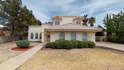 Single Family Home For Sale: 4508 Lazy Willow Drive