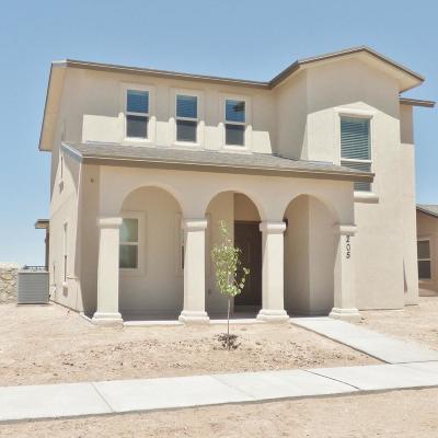Horizon City Single Family Home For Sale: 210 Lago Maggiore Street