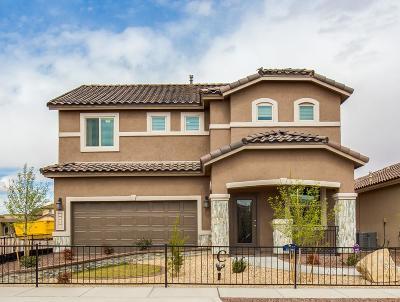 Single Family Home For Sale: 3928 Desert Nomad