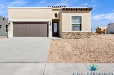 Single Family Home For Sale: 2841 Tierra Oasis Street