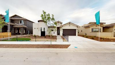 Single Family Home For Sale: 2832 Tierra De Moyo Place