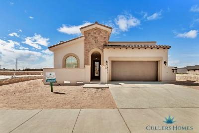 Single Family Home For Sale: 14924 Tierra Isaiah