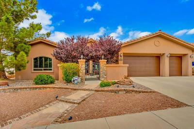 El Paso Single Family Home For Sale: 6233 Franklin Hawk Avenue