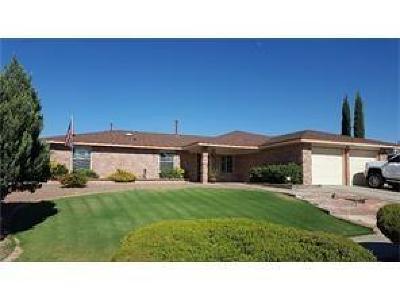 Vista Hills Rental For Rent: 1578 Billie Marie Drive