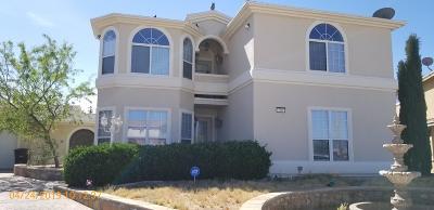 Horizon City Single Family Home For Sale: 200 Desert Breeze Drive