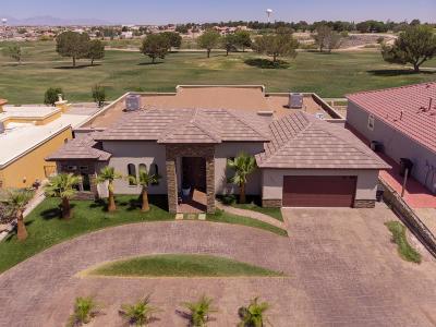 Horizon City Single Family Home For Sale: 16025 Darley Drive