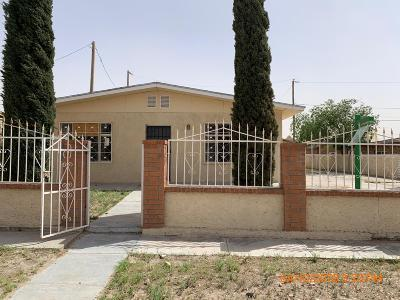 Canutillo Single Family Home For Sale: 1114 Meadow Road
