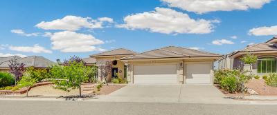 Ridgeview Est Single Family Home For Sale: 1471 Cheyenne Ridge Drive