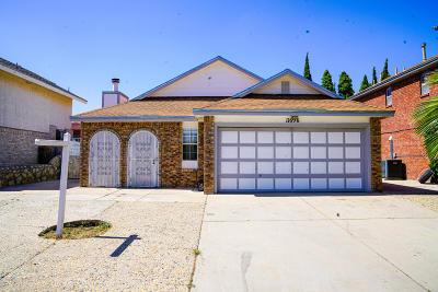 Vista Hills Single Family Home For Sale: 11696 Gwen Evans Lane