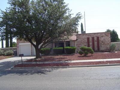 Vista Hills Single Family Home For Sale: 1698 Dale Douglas Drive