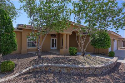 El Paso Single Family Home For Sale: 3220 Lanka Street