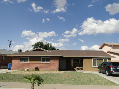 El Paso Single Family Home For Sale: 10013 Chezelle Drive