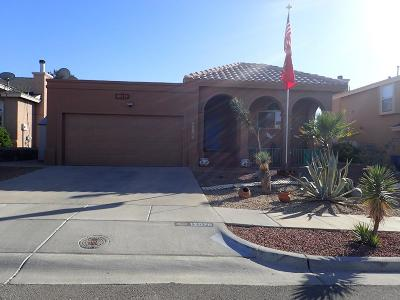 Vista Del Sol Single Family Home For Sale: 12078 Sterling Mary