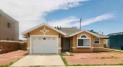 El Paso Single Family Home For Sale: 9833 La Morenita Circle