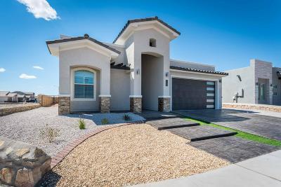 Single Family Home For Sale: 14704 Tierra Escape Avenue