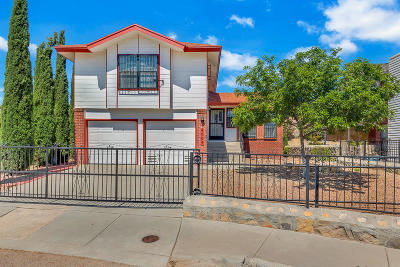 Single Family Home For Sale: 4609 Loma De Indios Lane