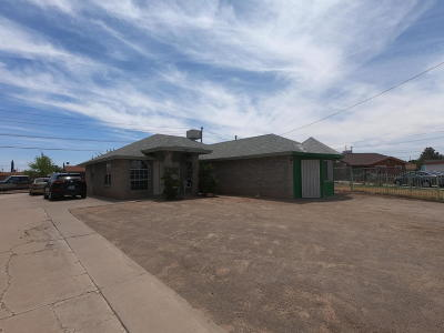 El Paso Multi Family Home For Sale: 9741 Gaza Drive