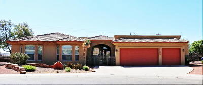 Single Family Home For Sale: 12660 Tierra Coral Court