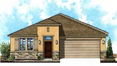 Single Family Home For Sale: 1084 Bronze Hill Avenue