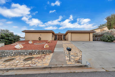 El Paso Single Family Home For Sale: 2908 Devils Tower Circle