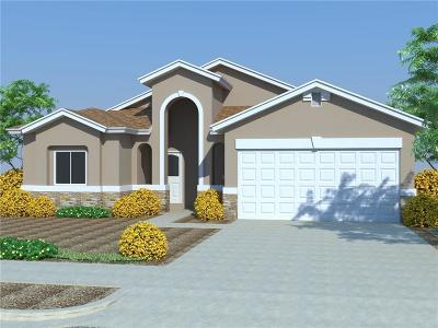 Single Family Home For Sale: 14705 Tierra Haven Avenue