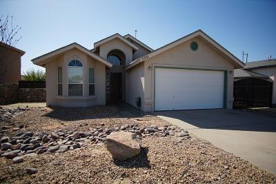 Horizon City Rental For Rent: 220 Lago Grande Drive