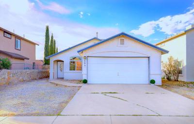 Socorro Single Family Home For Sale: 405 Valle Fertil Drive