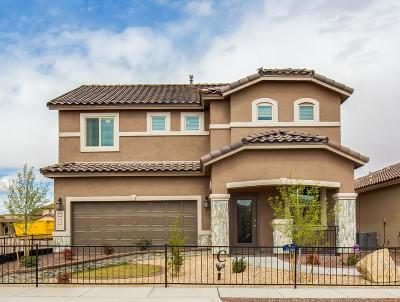 Single Family Home For Sale: 3980 Desert Nomad