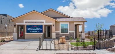 Single Family Home For Sale: 3976 Desert Nomad