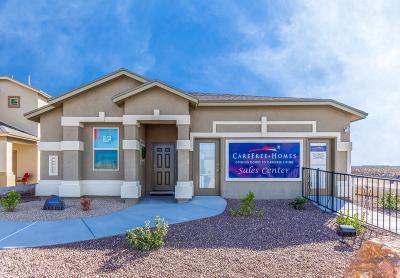 Single Family Home For Sale: 3972 Desert Nomad