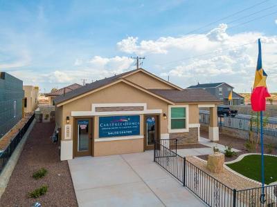 Single Family Home For Sale: 3968 Desert Nomad
