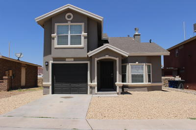 El Paso Single Family Home For Sale: 9495 Ariel Rico Court